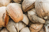 Dried of coconut — Stock Photo