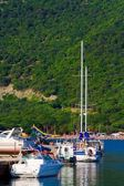 Beautiful white yachts at sea port — Stock Photo