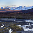 Alaska River Valley - Denali — Stock Photo #70097197