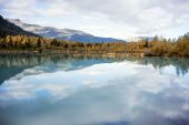 Autumn in Alaska - Lake & Aspen Forest — Stock Photo