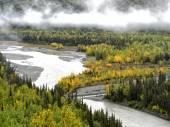 Alaska Highway View — Стоковое фото