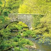 Old stone bridge. South Ireland. — Foto de Stock