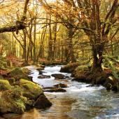 Golith Falls Cornwall UK — Stock Photo