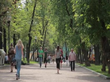 Moscow, Gogol Boulevard. Alley in the park. Passers — Stock Video
