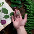 Floral mix of fresh cuted, pressed and dried spring flowers and leafs all decorated in rustic style on dark wood background with female hand arranging all soft focus overhead-angle shot — Stock Photo #75638995