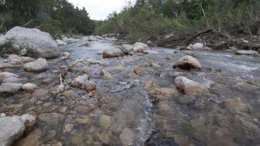 山区河流流经绿色森林 — 图库视频影像