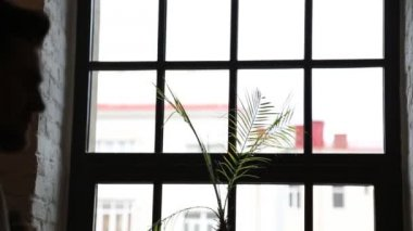 Newlyweds stand beside window — Stock Video