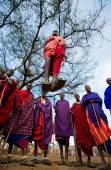 Masai warriors traditional jumps — Stock Photo