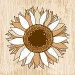Beautiful vintage sunflower — Stock Vector #66811393