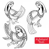 Set of Mythological Birds with head of woman — Stock Vector
