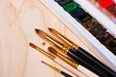 Professional watercolor paints in box with brushes. — Stock Photo