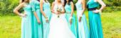 Bridesmaids — Stock Photo