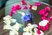 Grooms Boutonniere — Stock Photo