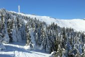 Kopaonik mountain in winter, Serbia — Stock Photo