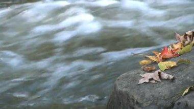 Water splashes moss covered rocks — 图库视频影像