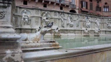 The Fonte Gaia in the Piazza del Campo in Siena — Stock Video