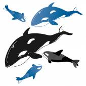 Pack of whales and whale babies — Stock Vector