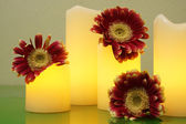 Three Gerbera and electric candles on the table — Stock Photo