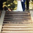 The bride and groom with a bouquet standing on the stairs in the — Stock Photo #69522485