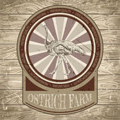 Organic farm vintage label with ostrich on the background texture of wooden boards. Retro hand drawn vector illustration in sketch style — Stock Vector