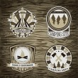 Set of vintage camping and outdoor adventure logo badges and labels. Retro vector illustration — Stock Vector #77859382