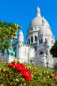 Red flowers on a background of the Sacré Coeur — Stok fotoğraf