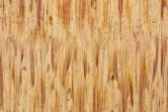 Macro bamboo wood background — Stok fotoğraf