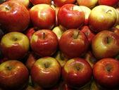 Groep van rode appels in rij — Stockfoto