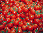 Fresh red tomatoes as a background — Stock Photo