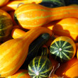 Small decorative pumpkins — Stock Photo #66894497