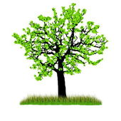 Illustration of beautiful spring tree with fresh new leaves and grass. — Stock Photo