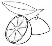 Delightful garden - Two halves of lemon and one leaf — Stock Vector