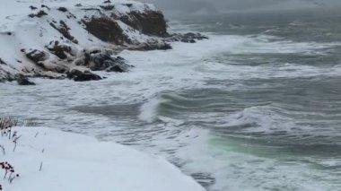 Snow covered ocean coast — Stock Video