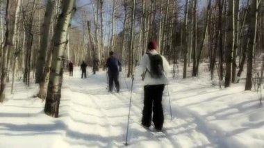 Cross country kayak grubu — Stok video