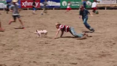 Pig chase at kid rodeo — Stock Video