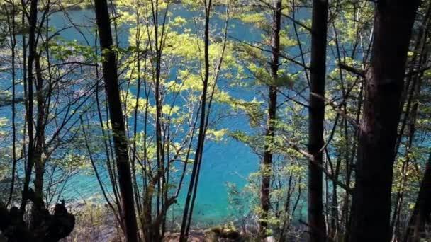 Lago en el hermoso valle de Juizhaigou — Vídeo de stock