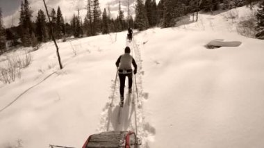 A woman cross country skiing — Stock Video