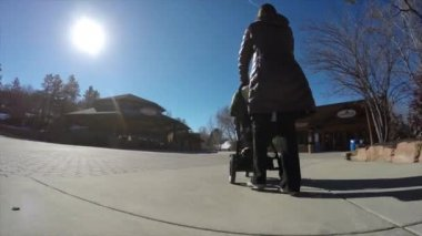 Mother pushing a stroller — Stock Video