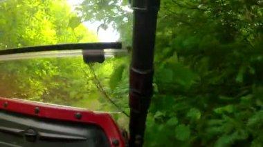 Wheeler driving through trees — Stock Video