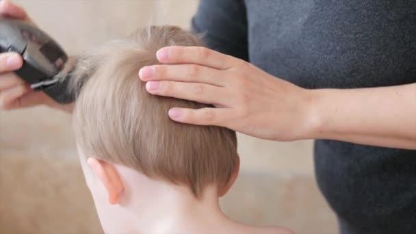 Woman cuts hair of a toddler — Vidéo