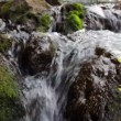 Clear Mountain Stream — Stock Video #70306823