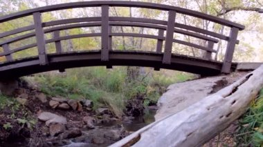 Footbridge over mountain stream — Stock Video