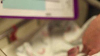 Getting footprints of newborn — Stock Video