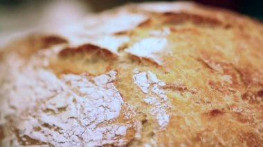 Vers brood — Stockvideo