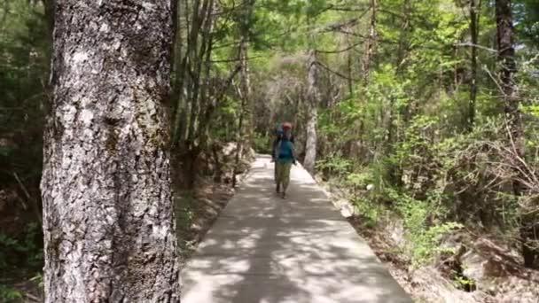 Family hiking at jiuzhaigou valley national park — Vídeo de stock