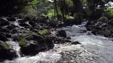 Clear stream with boulders — Stock Video