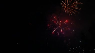 Great firework at night — Stock Video