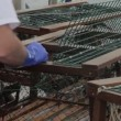 Lobsters in a fishing boat — Stock Video #70510423
