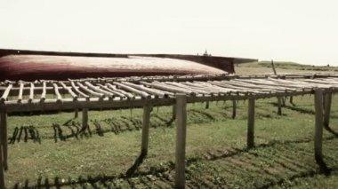 Fish drying racks — Stockvideo