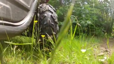 A rhino four wheeler driving — Stock Video